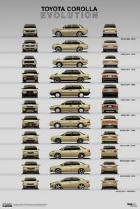 Toyota Corolla Evolution