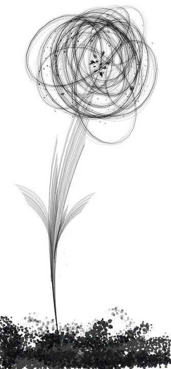 Symmetrical Flower - Pencil & Paper