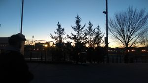 Lanscape in the Bronx