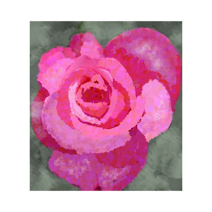 Pink Rose - Artistic Humour