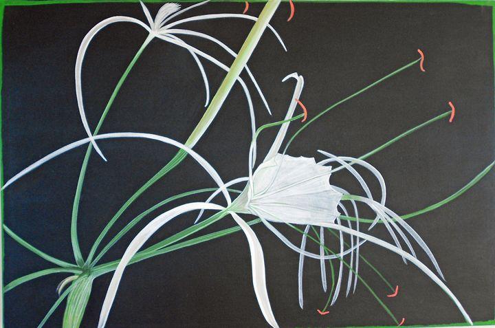 spider Lilly - Bruce Burt artist