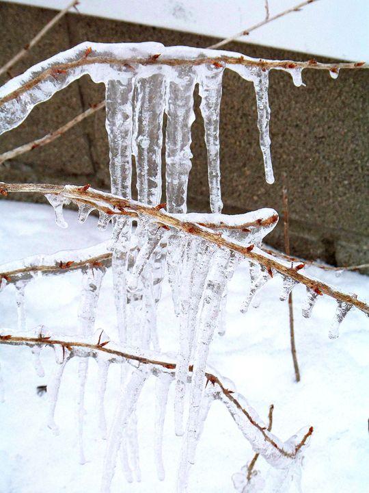 Ice - TiffanyWright