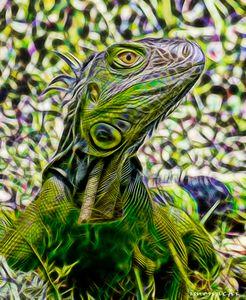 Green Electrical Iguana