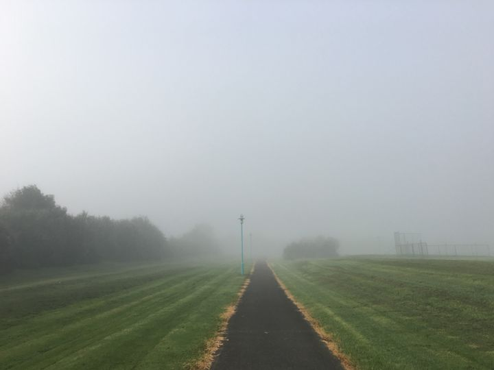 Foggy Mornings - CaitsCaptures