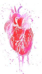 Heart - Art by 2E
