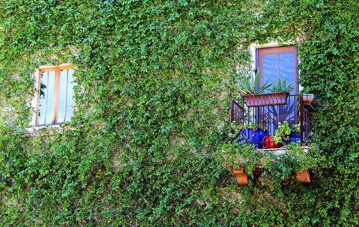 Garden Wall - Art by 2E