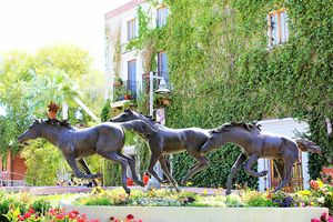 Old Town Scottsdale Horses