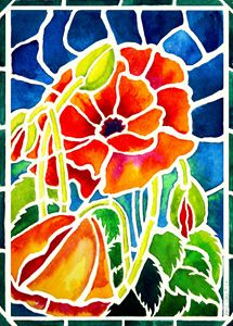'Stained Glass' Poppies - Janis Ilene Images