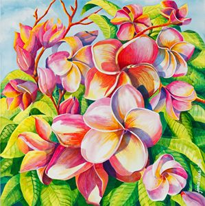 Plumeria in Sunlight - Janis Ilene Images