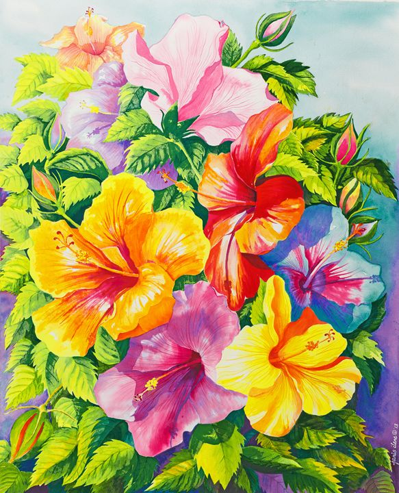 Hibiscus Rainbow Array - Janis Ilene Images