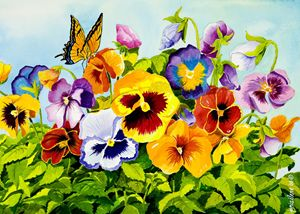 Pansies with Butterfly - Janis Ilene Images