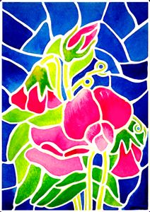 'Stained Glass' Sweet Peas - Janis Ilene Images