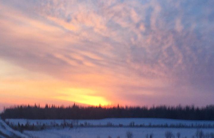 Winter sunrise - Terri Price