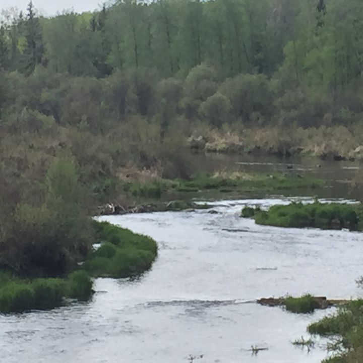 Winding creek - Terri Price