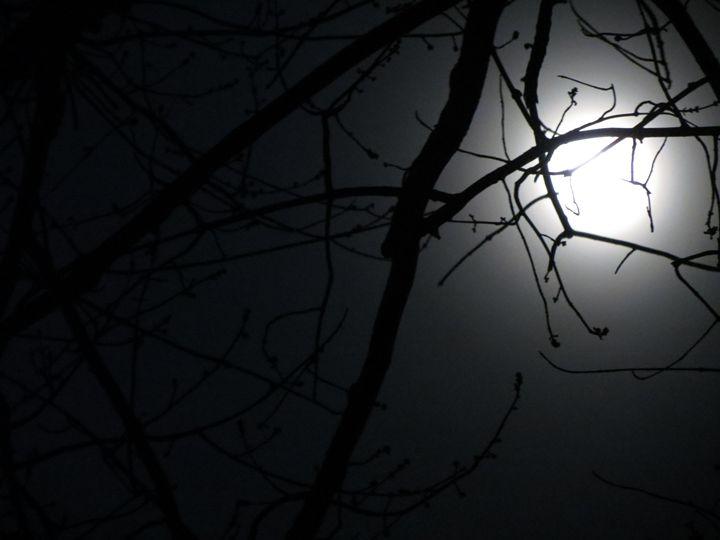 Soft Moon - Haley Riggle