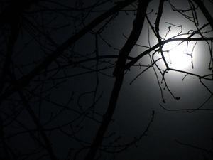 Soft Moon