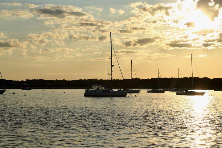 Sail Boats - Brooklyn Xpressions
