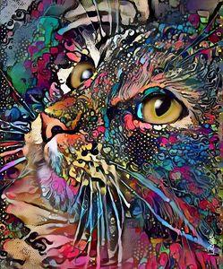 Sissy, cat 70x58 cm