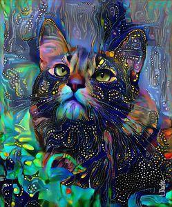 Melizza, cat - 70x58 cm