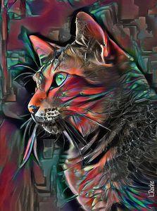 Manfred, cat - 70x52 cm - Mixmedia