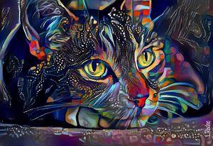Sonny blue - cat, 70x48 cm - Léa ROCHE