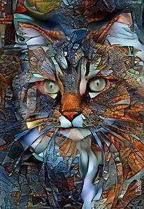 Paris, cat - 70x48 cm