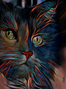Kayrou, cat - 70x52 cm - Léa ROCHE