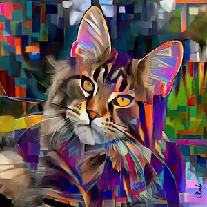 Lazzy, cat - 70 x 70 cm