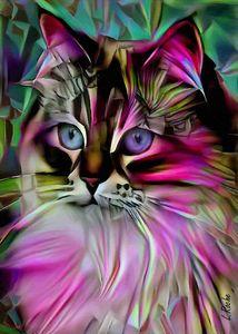 Esty, cat - 70x50 cm