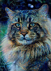 Pandoro, cat - 70x50 cm