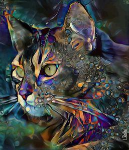 soghor, cat - 70x60 cm