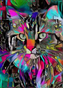 Janky - cat - 70x50 cm