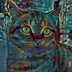 Sweety-Moon, cat - 70x70 cm - Léa ROCHE
