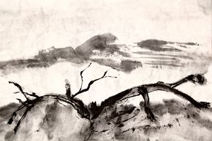 chinese ink on xuan paper