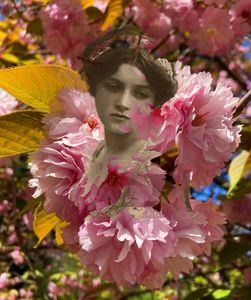 The ladies of flowers