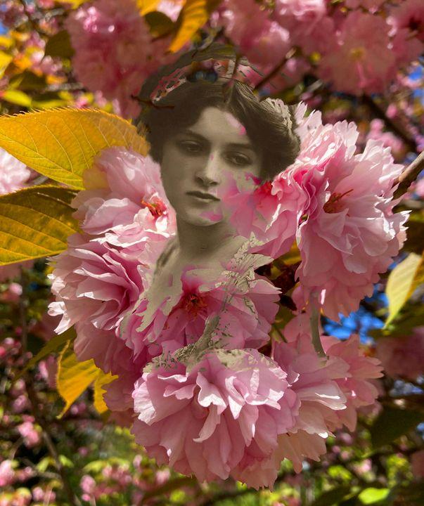 The ladies of flowers - Cristina Cerminara