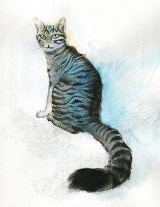Cat Lola - Cristina Cerminara