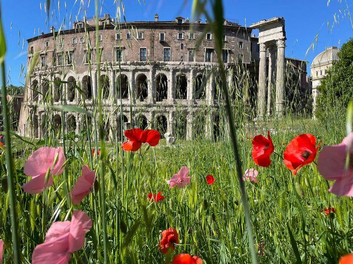 Spring in Rome - Cristina Cerminara