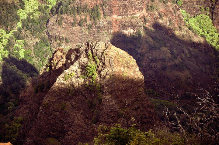 Waimea Canyons, Kauai, HI - Shirleypix Art & Photography