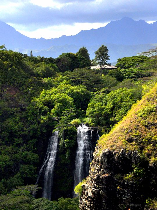 Kauai Falls - Shirleypix Art & Photography