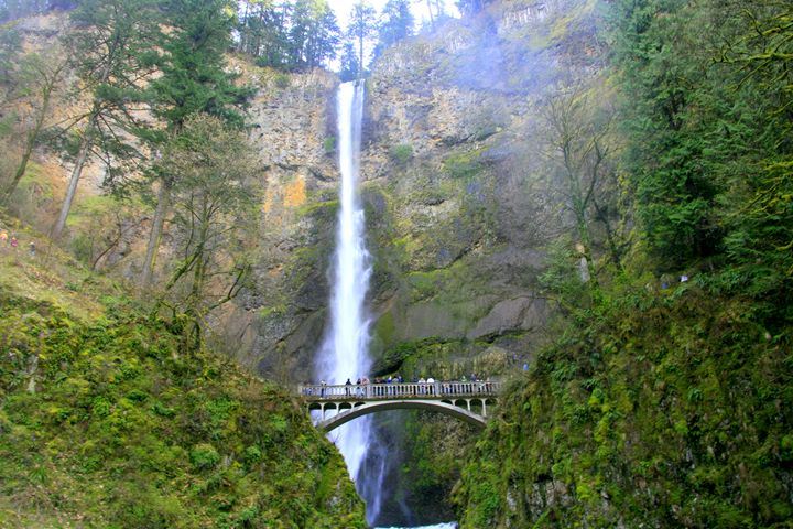 Multnomah Falls - Shirleypix Art & Photography