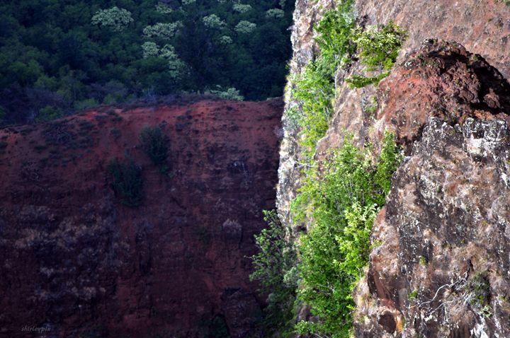 Waimae Canyons - Shirleypix Art & Photography