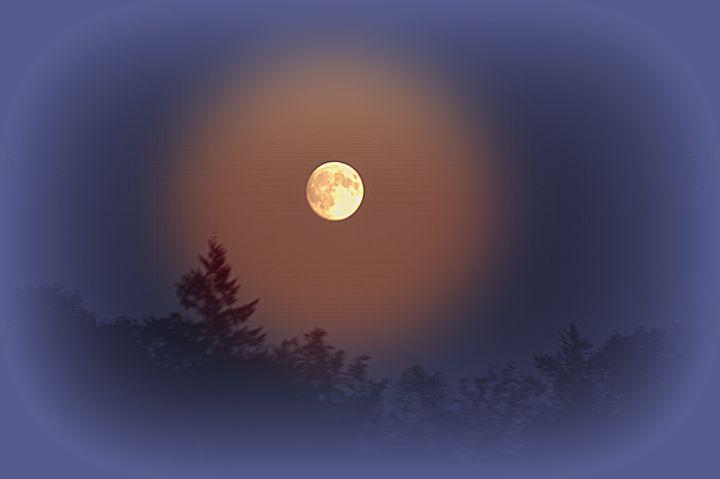 Yellow Moon - Shirleypix Art & Photography