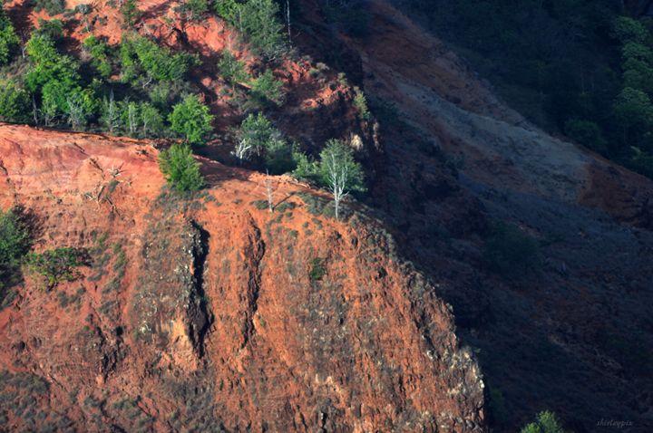 Cliff - Waimae Canyons - Shirleypix Art & Photography