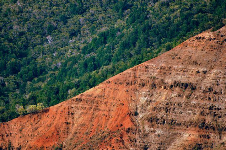 View - Waimae Canons - Shirleypix Art & Photography