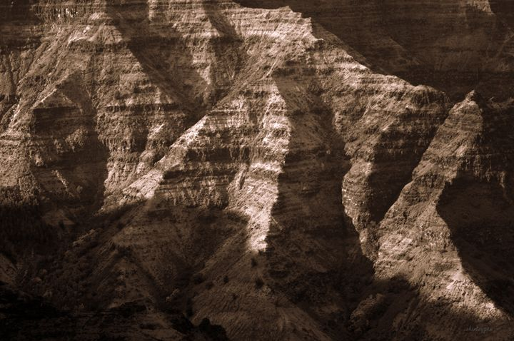 Shadows - Shirleypix Art & Photography