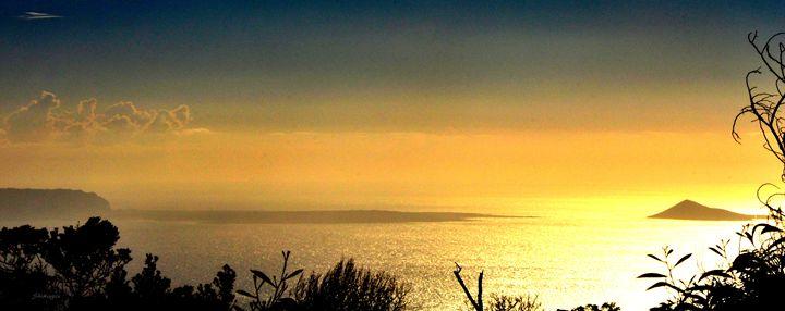 Golden - Panoramic - Shirleypix Art & Photography