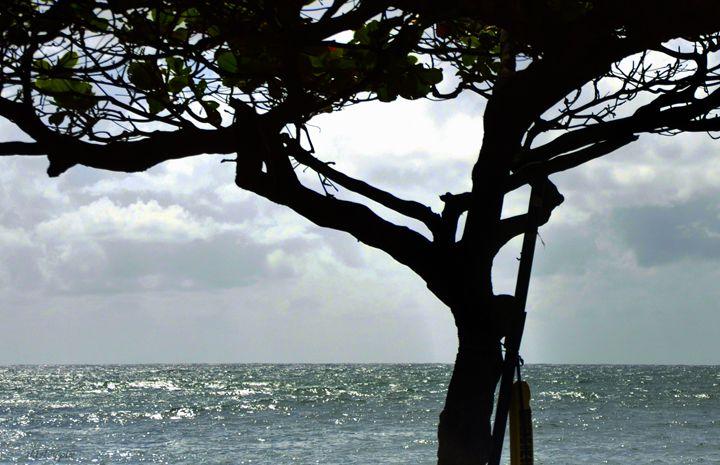 Ocean - Shirleypix Art & Photography