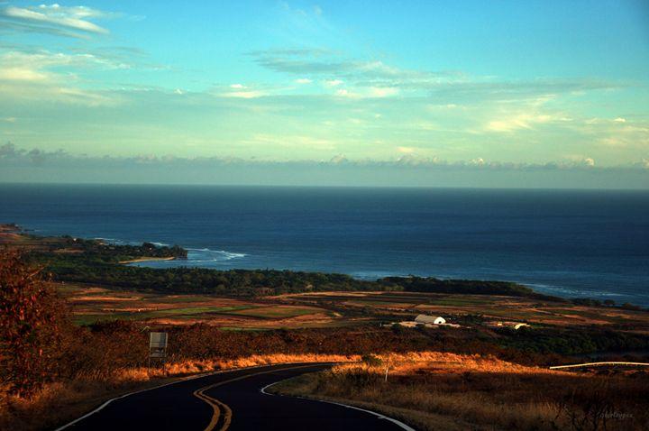 Roadside View - Shirleypix Art & Photography