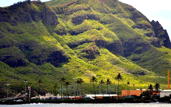 Kauai Mountain Overlooking - Shirleypix Art & Photography